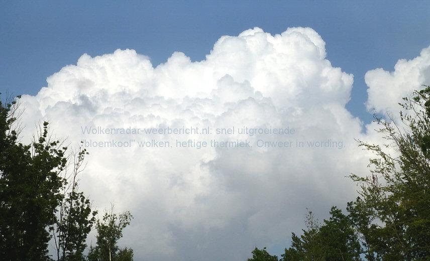 Bewolking wolkenradar bloemkool wolken cumulus